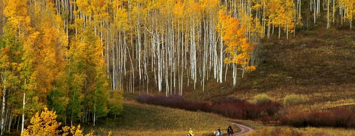 Kebler Pass is one of The 10 Best Fall Hiking Trails in the U.S..