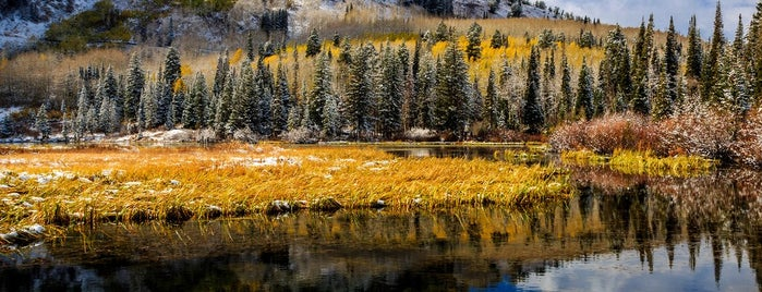 Silver Lake Interpretive Trail is one of The 10 Best Fall Hiking Trails in the U.S..