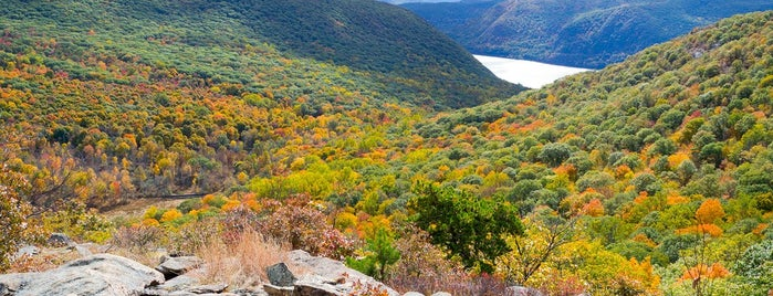 Breakneck Ridge is one of The 10 Best Fall Hiking Trails in the U.S..