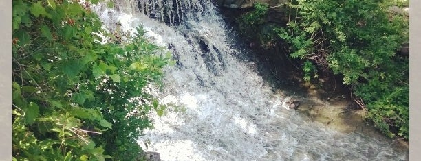 Beamer Falls Conservation Area is one of Trails & Hikes.