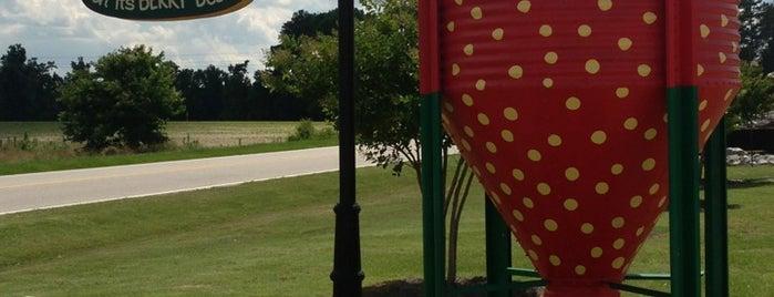 Porter Farms & Nursery is one of NC To-do list.