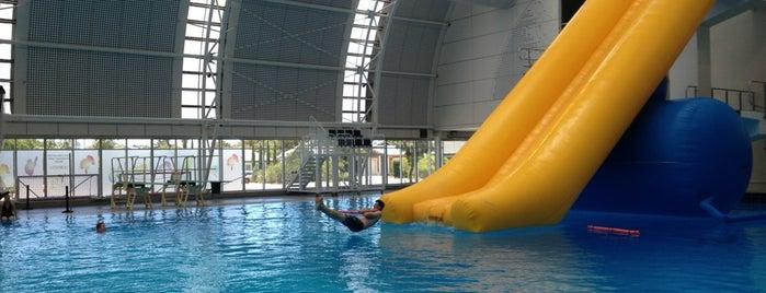 SA Aquatic & Leisure Centre is one of Posti che sono piaciuti a El Micho.