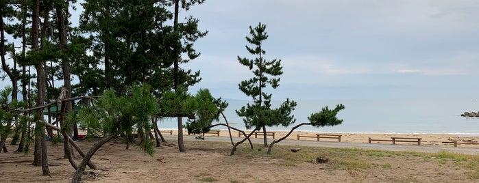雨晴 松太枝浜キャンプ場 is one of モリチャン : понравившиеся места.