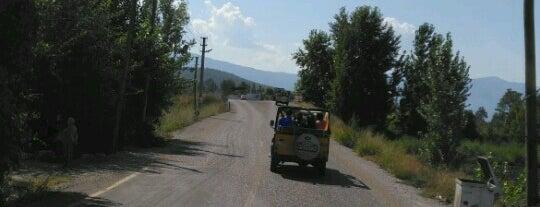 Evergreen Jeep Safari is one of Orte, die Ayça G. gefallen.