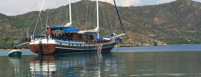 Arapmezari Koyu is one of Marmaris.