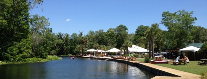 Wekiva Island is one of Locais curtidos por Mike.