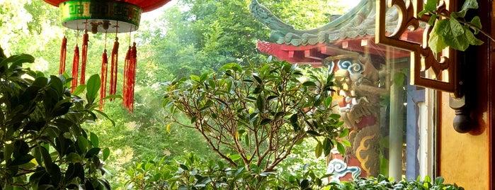 chinese möhringen