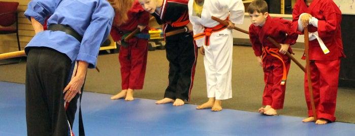Vision Martial Arts is one of Orte, die Robbie gefallen.