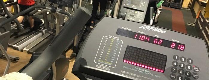 SAS Gym is one of Locais curtidos por Emilia.