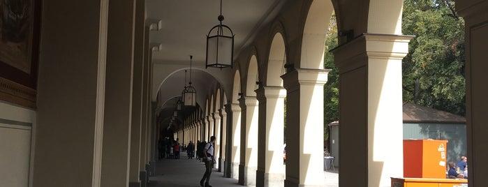 Hofgarten is one of Tempat yang Disukai Jus.
