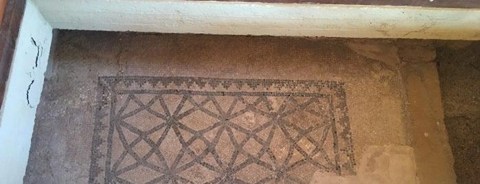 Paphos Mosaics is one of Tempat yang Disukai Jus.
