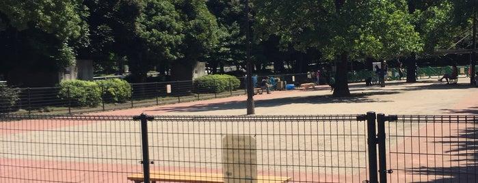 駒沢オリンピック公園 ドッグラン is one of Lieux qui ont plu à まるめん@下級底辺SOCIO.