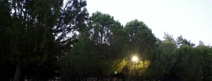 Στάση Σταθμός ΗΣΑΠ is one of Ifigenia: сохраненные места.