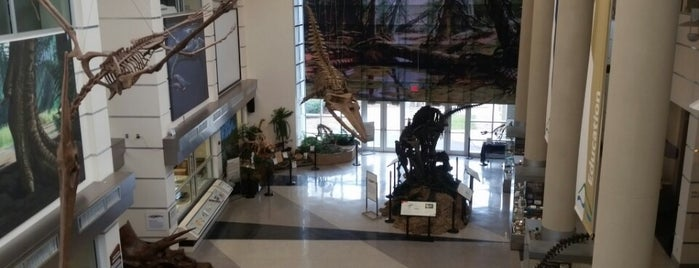 Virginia Museum of Natural History is one of Virginia Jaunts.