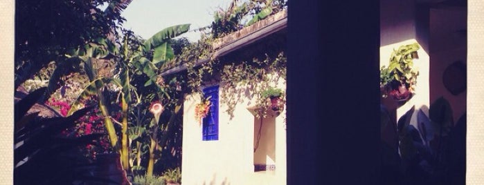 Las Palomas is one of สถานที่ที่ Liliana ถูกใจ.