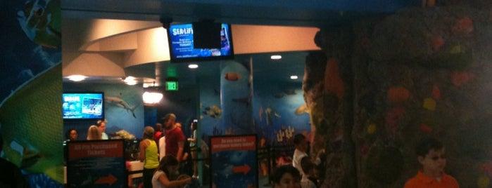 SEA LIFE Grapevine Aquarium is one of Culture in DFW.