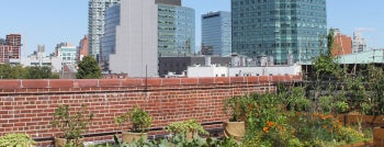 MoMA PS1 Rooftop Garden is one of Cool Things To Do on NYC Rooftops.
