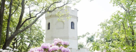 Snug Harbor Cultural Center & Botanical Garden is one of New York IV.