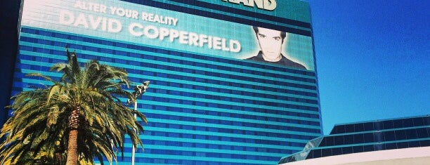 MGM Grand Garden Arena is one of Posti che sono piaciuti a raphael.