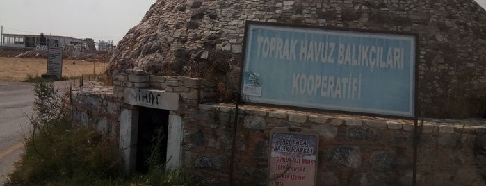 Koru Köyü is one of สถานที่ที่ SUAT YALÇIN ถูกใจ.