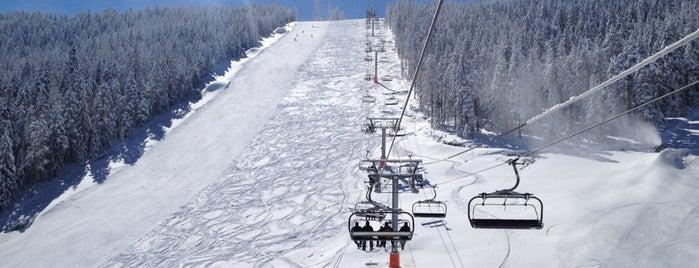 Ski centar Tornik is one of สถานที่ที่ Aleksandar ถูกใจ.
