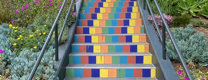 Tompkins Steps is one of Mosaic steps.