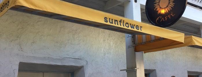 Sunflower Caffé is one of Lugares guardados de Neel.