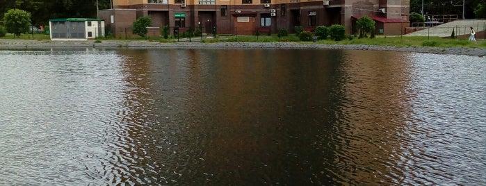 Кошачий пруд is one of Lieux qui ont plu à Ilija.