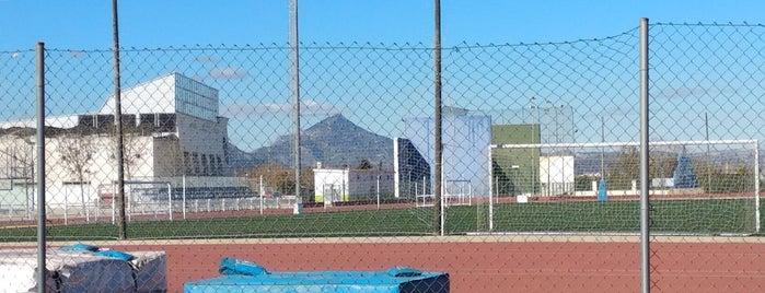 Oliva is one of Lugares favoritos de Adria.