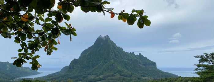 Belvedere Lookout is one of French Polynesia.