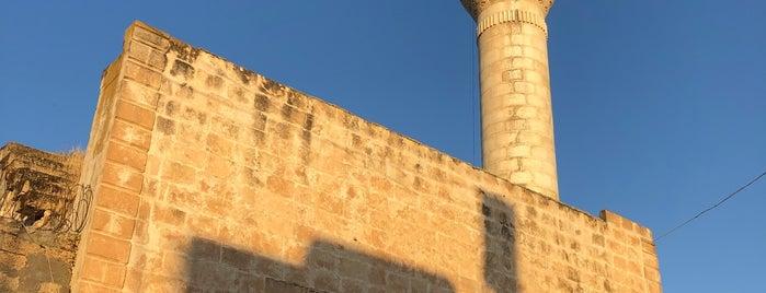 Yayvantepe is one of Orte, die Huseyın gefallen.