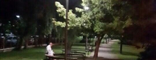 Yıldırım Beyazıt Parkı is one of Ankaram.