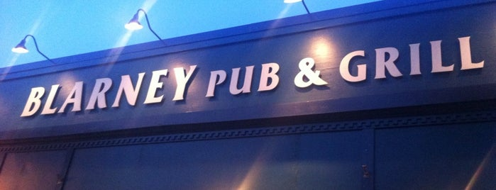 Blarney Pub and Grill is one of Brooke 님이 좋아한 장소.