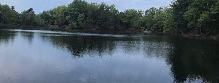 Puffer's Pond is one of E : понравившиеся места.