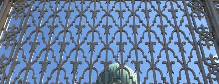 Sinagoga Di Firenze is one of Contiki!.