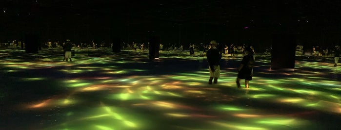 teamLab Planets is one of Tokyo museums and museum tours.
