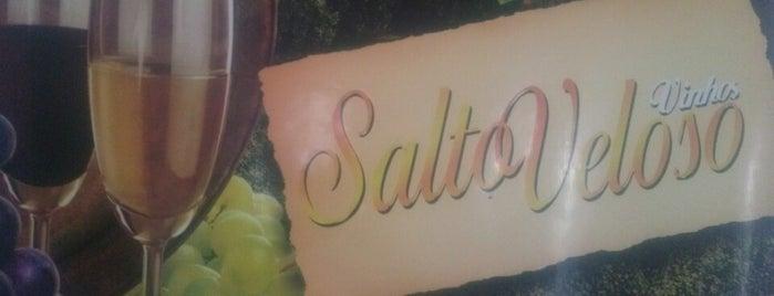 Vinhos Salto Veloso is one of Locais curtidos por Káren.