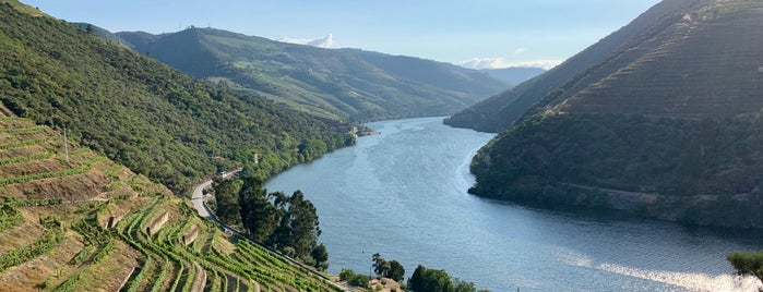 Valle Do Douro is one of Locais curtidos por Ishka.
