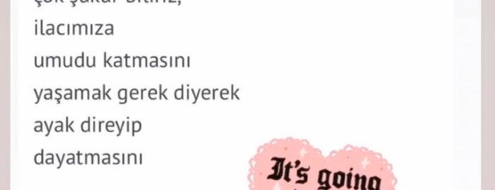 Erhan Apaydın Kuaför Ve Güzellik is one of Berrin : понравившиеся места.