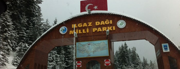 Ilgaz Dağı Milli Parkı is one of Lugares guardados de Ergun.