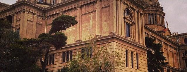 Museu d'Arqueologia de Catalunya is one of Museus i monuments de Barcelona (gratis, o quasi).