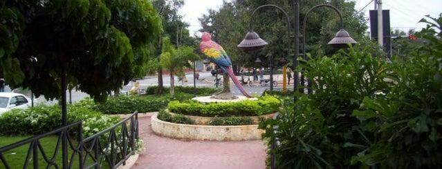 Boulevard de la Romana is one of Isla Catalina.