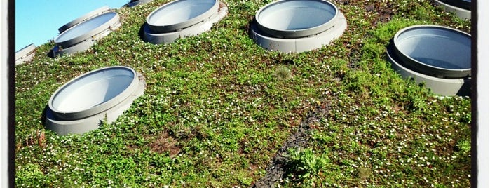 The Living Roof is one of San Francisco!.