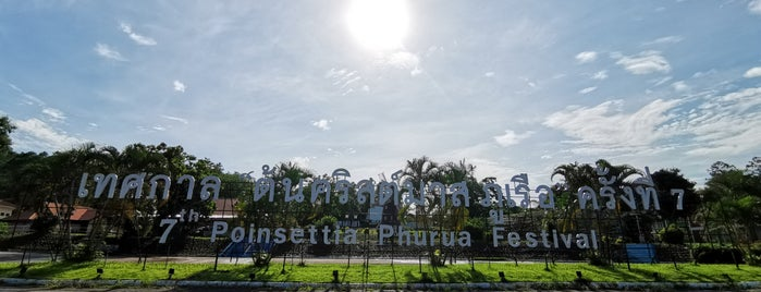 Poinsettia Garden Phurua is one of ขอนแก่น, ชัยภูมิ, หนองบัวลำภู, เลย.