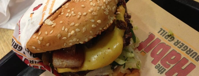The Habit Burger Grill is one of Burgers & more - So.Cal. edition.