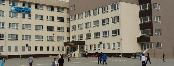Cevizli Ortaokulu is one of Lugares favoritos de Kadriye.