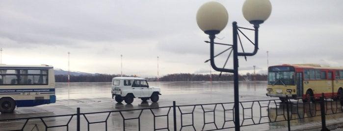 Перронный автобус is one of Tema's Liked Places.