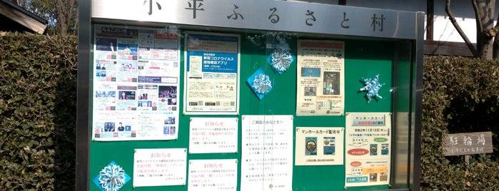 小平ふるさと村 is one of 東京都:マンホールカード配布.