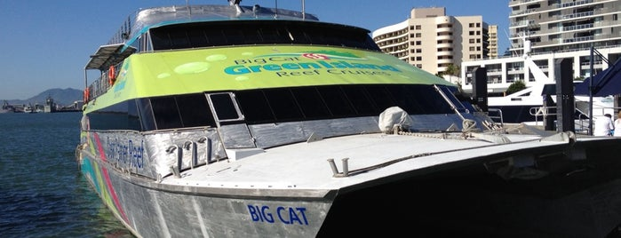 Big Cat Green Island Reef Cruises is one of Locais curtidos por Emily.