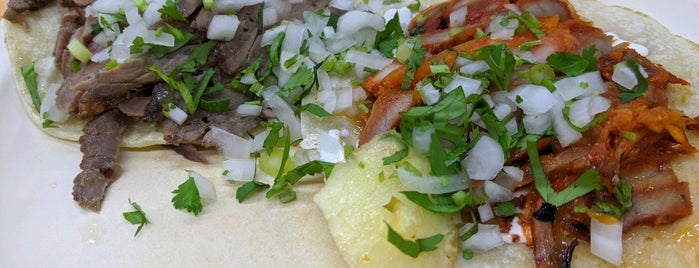 El Fogón Fiesta Jarocha is one of Latin Flavor... sabroso!.